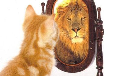 la legge dello specchio…