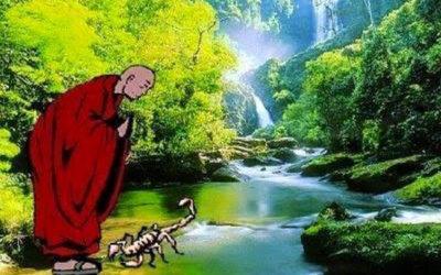 il maestro e lo scorpione