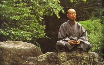 le parole del maestro zen
