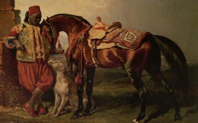 l'uomo, il cavallo e il cane