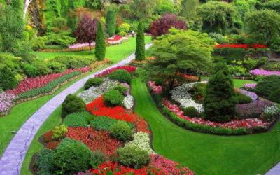 il giardino della mamma