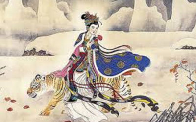cavalcare la tigre